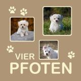 "Thumbnail von Themen-Passepartout ""Haustier"""