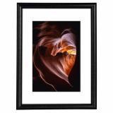 Variante Schwarz von Holz-Bilderrahmen Phoenix