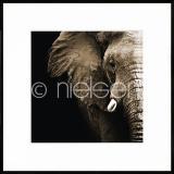 "Thumbnail von Gerahmte Kunst ""Elephant"" mit Alurahmen C2"