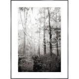 "Thumbnail von Gerahmte Kunst ""Forest Black and White"" mit Alurahmen Alpha"