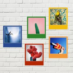 FotoFun Color - 10er-Set