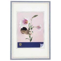 Bilderrahmen Kunstoff-Bilderrahmen Lily blau