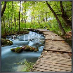 """Gerahmte Kunst """"Footprint Forest"""" mit Alurahmen Alpha"""