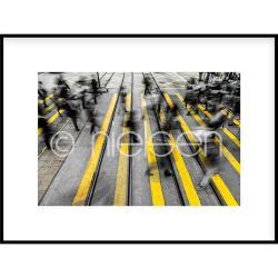 """Bilderrahmen Gerahmte Kunst """"Zebra Crossing"""" mit Alurahmen C2"""