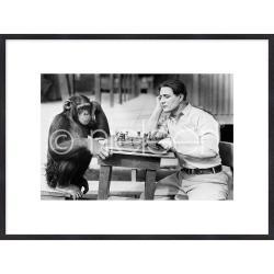 "Bilderrahmen Gerahmte Kunst ""Monkey chess"" mit Holzrahmen Quadrum"