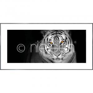 "Gerahmte Kunst ""Tiger"" mit Alurahmen Alpha"