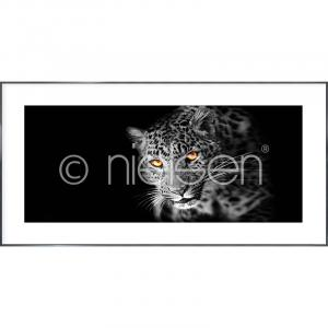 "Gerahmtes Bild ""Leopard"" mit Alurahmen Alpha"