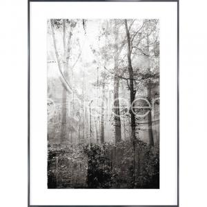 "Gerahmte Kunst ""Forest Black and White"" mit Alurahmen Alpha"