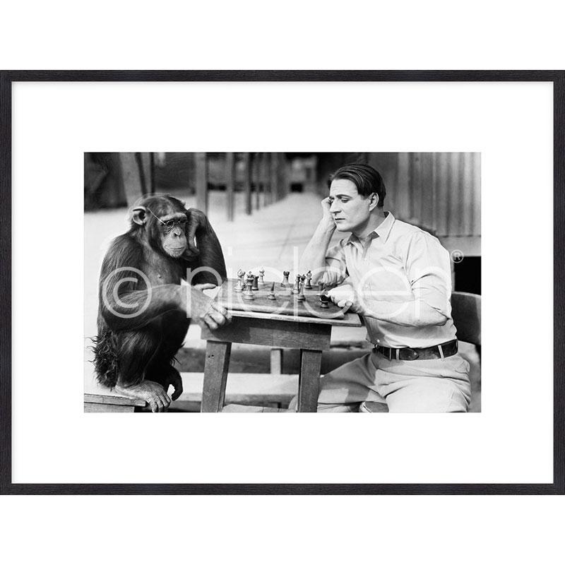 "Gerahmte Kunst ""Monkey chess"" mit Holzrahmen Quadrum"