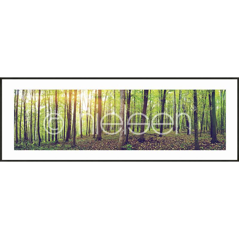 """Gerahmte Kunst """"Forest"""" mit Alurahmen C2"""