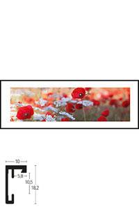 """Gerahmtes Bild """"Poppy Flower"""" mit Alurahmen C2"""