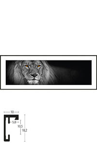 "Gerahmtes Bild ""Lion black and white"" mit Alurahmen C2"
