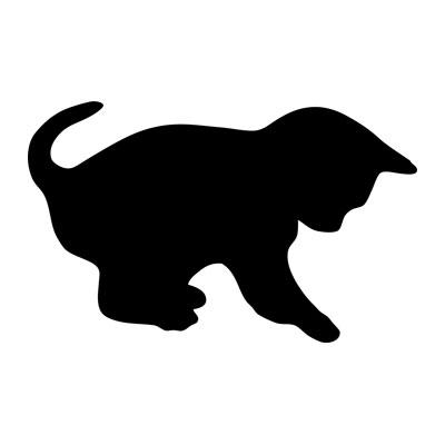 Motiv Kreidetafel als Katze