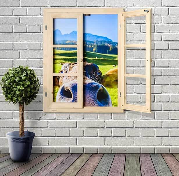 Dekofenster